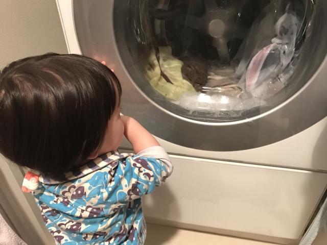 洗濯機を見ている子どもの写真