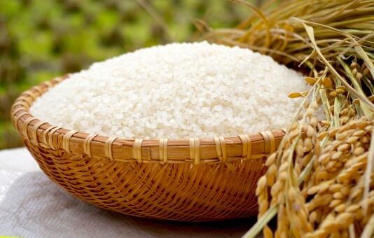 米粉には小麦粉より高価というデメリットも・・