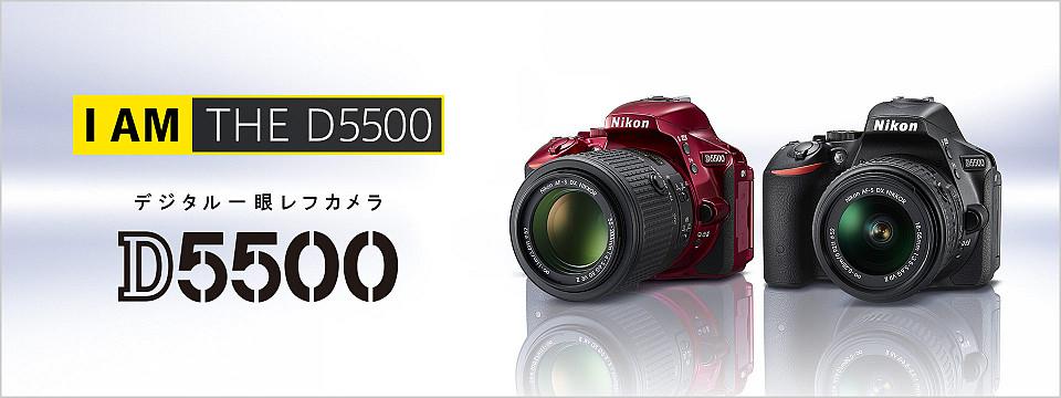 d55001