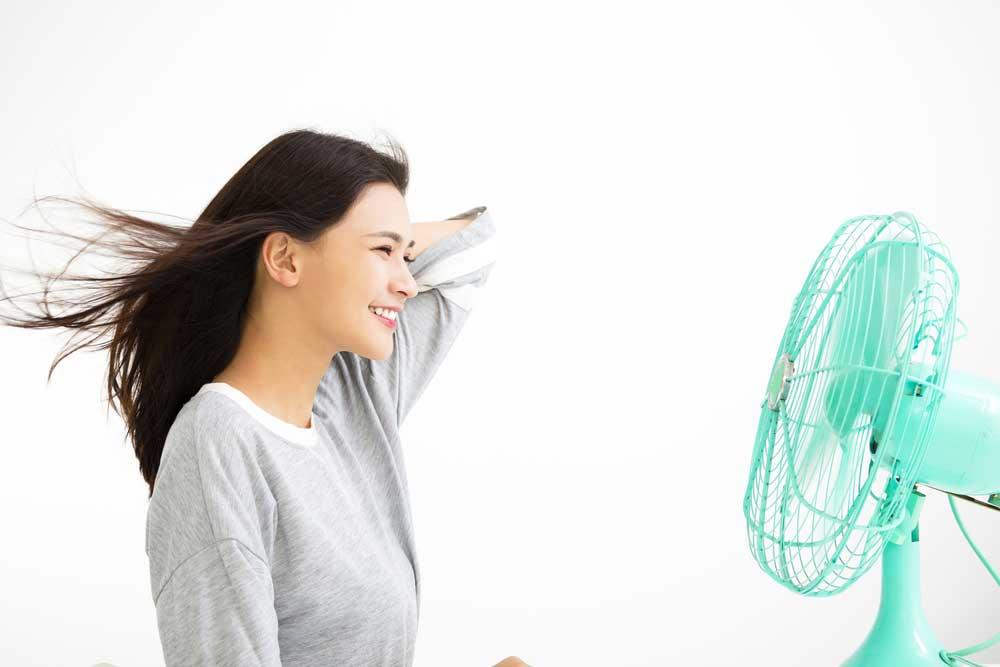 快適さを追求!コスパのいい扇風機4選