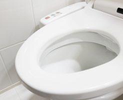 ウォシュレット おすすめ:温水洗浄便座の選び方